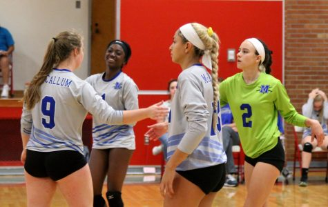 Volleyball teams trounce Travis