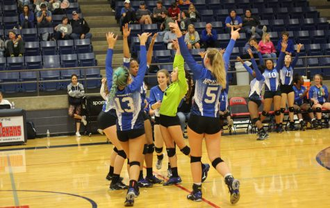 Varsity volleyball returns to playoffs