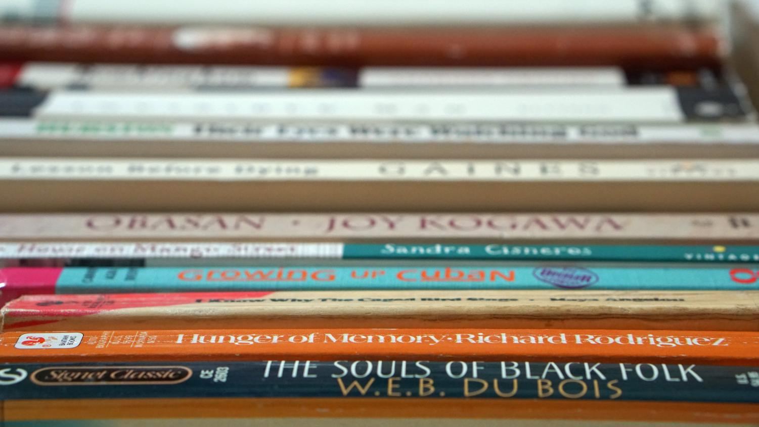 More of an effort must be made to expand the literary canon to authors of color. Out of the 43 books McCallum students read in English class, including AP and regular English classes, eight were written by authors of color.