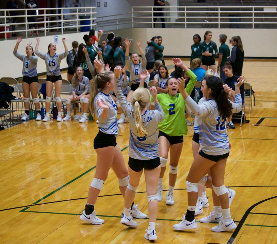 The team on the court and on the bench celebrate the teams 2-1 victory over Desoto, the teams fifth victory in a row and sixth in eight matches at the AISD Jason Landers Memorial tournament.