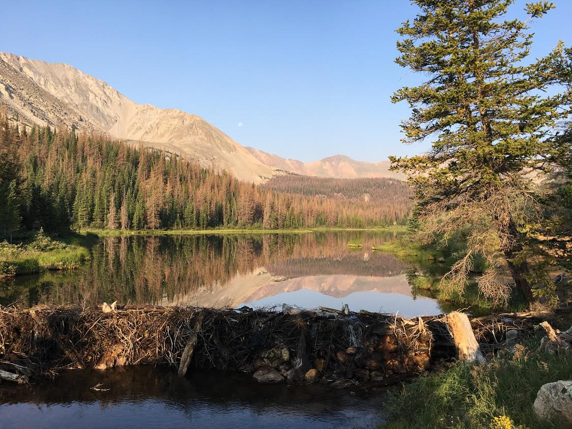 Browns Lake in the Gunnison National Forest in Central Colorado is at the end of a six mile trail, and has a elevation of almost 12,000 feet. The lake may be cold, but the views during sunrise are hard to beat. Photo by Max Rhodes.