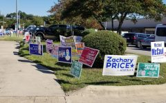During early voting, a motley mosaic of political signs borders the sidewalk leading to the Old Quarry Library at 7051 Village Center Drive.