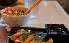 Flavor Profiles: Pork Gyoza and Negi rice bowl