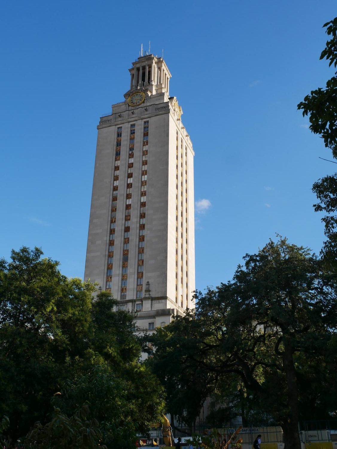 The view of the UT tower from the famous turtle pond.