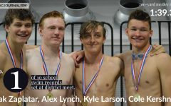 Swim team sets 10 school records at district meet