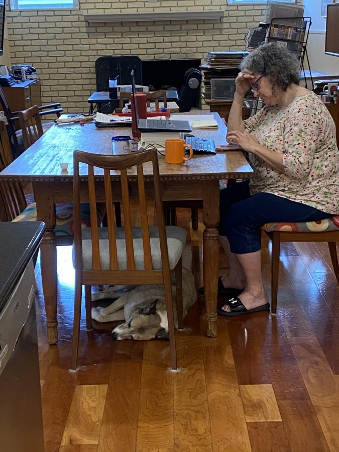 MOM WORKING: This is my Mom working from home while my dog lays under the table. My dog has really enjoyed having more company around the house since usually it's just the cat. I don't think my mom enjoys our company quite as much though. Photo by Thomas Melina Raab.