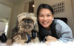 """LISTENING IN: Freshman Sophie Leung-Lieu and her shaggy dog, Sun Tzu lay on the floor with their headphones in. Moments after this photo was taken, Sun Tzu rolled over and was not in the mood to be posing. """"It was difficult to get a good photo where he was sitting up straight,"""" Leung-Lieu said. """"He looked grumpy in every other picture we took."""" In the end, Sophie and her pet companion got the right shot."""