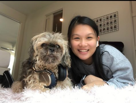 "LISTENING IN: Freshman Sophie Leung-Lieu and her shaggy dog, Sun Tzu lay on the floor with their headphones in. Moments after this photo was taken, Sun Tzu rolled over and was not in the mood to be posing. ""It was difficult to get a good photo where he was sitting up straight,"" Leung-Lieu said. ""He looked grumpy in every other picture we took."" In the end, Sophie and her pet companion got the right shot."