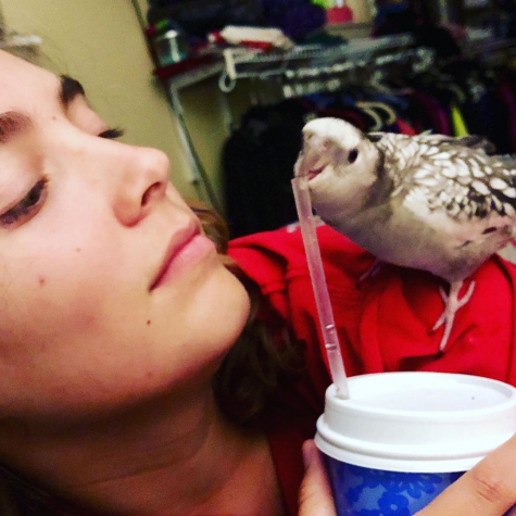 """Junior Ava Phillips looks to her bird Leviathan (Levi for short), as he bites the straw of her drink. While she may be the one being perched on in this photo, Levi serves as support and company to Phillips  as she spends hours on her animations. """"I love my bird with a passion,"""" Phillips said. """"He sits with me through all of this. I consider him my production consultant."""""""